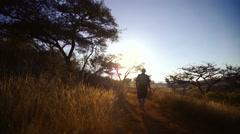 Hiker walking through backlit grasslands,South Africa Stock Footage