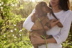 Cocker Spaniel Owner Holding Dog On Outdoor Walk Stock Photos