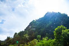 Tropical lime stone hill against sunny sky Stock Photos