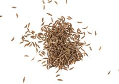 Cumin seeds or caraway isolated on white background Stock Photos