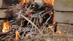 Burning wooden logs with small twigs. Stock Footage