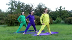 Yoga Class in Nature. Three Girls Perform Synchronous Position of the Triangle. Stock Footage