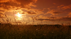Sunset in South France Stock Footage