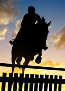 Silhouette of a rider on a horse jumping over obstacle - stock photo