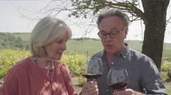Senior couple drinking wine at vineyard Stock Footage