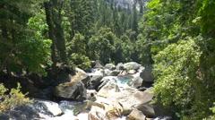 A Mountain Stream in Yosemite Stock Footage
