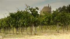 Old religious domes and vineyards, Languedoc France Stock Footage