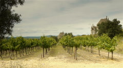 Vineyards at old religious domes, Languedoc France Stock Footage