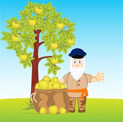 Collection of the harvest apple Stock Illustration