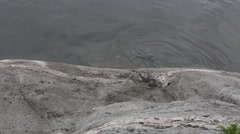 Water Rippling against a Rock Stock Footage