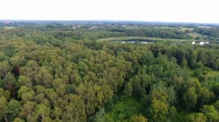 Summer landscape. Green trees at riverbank in Poland. Stock Footage