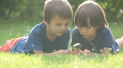 Beautiful happy children, boy brothers, exploring nature with magnifying glas Stock Footage