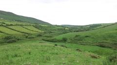 Farmland field at wild atlantic way in ireland Stock Footage