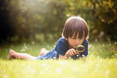 Beautiful happy child, boy, exploring nature with magnifying glass, summertim Stock Photos