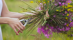 One young woman cutting flowers with a clipper, making a flower bunch standing Stock Footage