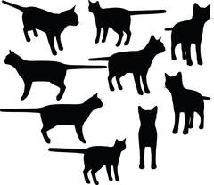 Cat collection vector silhouette Stock Illustration