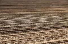 empty agricultural field - stock photo