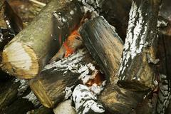 A log fire in a fire pit, with glowing embers. Stock Photos
