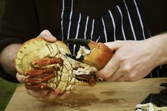 Close up of a chef preparing a crab. Stock Photos