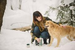A woman stroking a golden retriever in woodlands in winter. Stock Photos