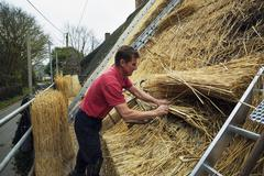 Man thatching a roof, layering and fastening yelms of straw. Stock Photos