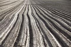 Plowed field, furrows Stock Photos