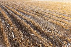 Plowed land, frost Stock Photos
