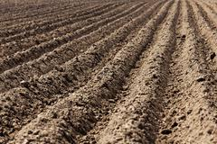 Plowed land, furrows Stock Photos