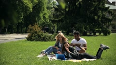 Group of diverse students studying outside campus. Stock Footage