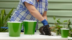 Mother And Child Planting Flowers Stock Footage