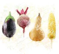 Fresh vegetables watercolor - stock illustration