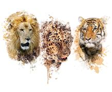 Lion ,Leopard and Tiger watercolor Stock Illustration