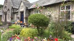 English cottage garden flowers Stock Footage