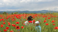 Young woman and lovely baby child playing with red poppies, rain with red petals - stock footage