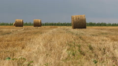 Summer landscape with straw bales Stock Footage