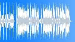 Loose Driving Garage Rock - 0:15 sec edit Stock Music