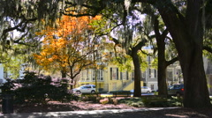 Savannah Georgia downtown Calhoun Square with trees and homes in sunset Stock Footage