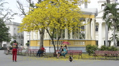 Santa Clara Cuba Main Square with locals and colorful trees and gazebo in Stock Footage
