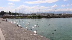 Geneva, Switzerland - Lake Side at Lake Geneva by Jet d'Eau Stock Footage