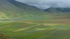 Flowering in the plain of Castelluccio di Norcia, Italy Stock Footage
