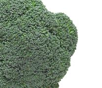 Close up of Broccoli Stock Photos