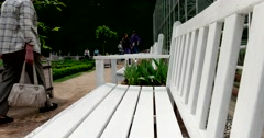 Bench, Apothecary garden, Botanical Garden of MSU, Moscow Stock Footage