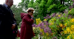 People sniff flowers of rhododendron, Botanical Garden of MSU, Moscow Stock Footage