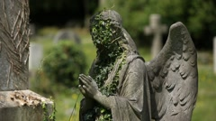 Praying Angel with the face covered in ivy - stock footage