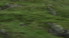 Aerial Shot of Car Moving on Curvy Mountain Road in Norway. - stock footage