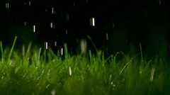 Grass blades and pouring water at night, shallow focus. Super slow motion Stock Footage