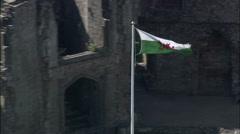 Raglan Castle Stock Footage
