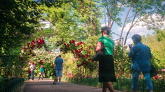 Bucharest, Romania - May, 28, 2016, Peoples admire roses in Botanical Garden - stock footage