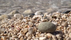 Round pebble and sea swash in the background Stock Footage