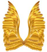 Gold Angel Wings - stock illustration